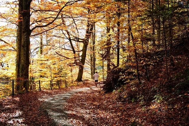 Sport im Herbst.