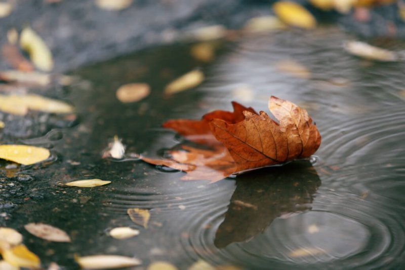 Italientief CHRISTIAN brachte kräftigen Regen