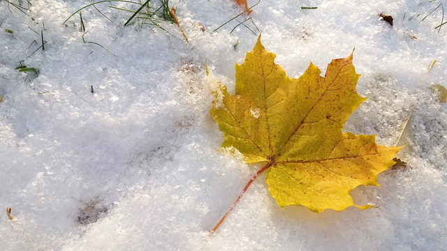 Schnee und Sonne im Herbst - pixabay.com