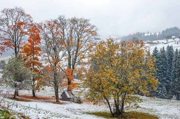 Tief OLAF bringt ein wenig Schnee