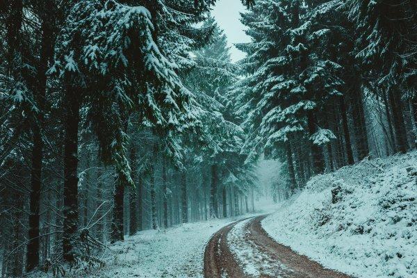 Montagnacht verbreitet Schneefall