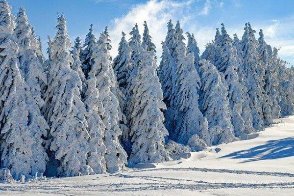 Schneemassen gab es im Jänner in den Nordalpen.