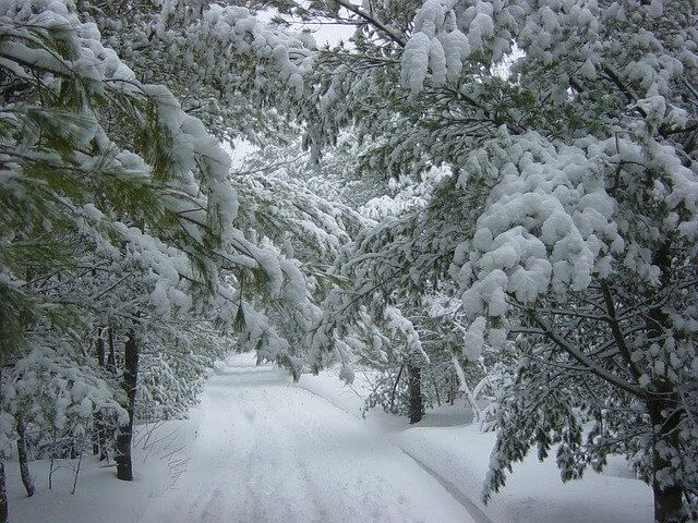 So sieht für viele Menschen der perfekte Winter aus.