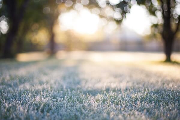 Frostige Märznächte