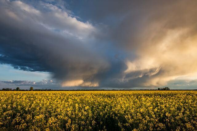 Aprilwetter im Mai: Kühles Wetter mit Regen und Gewittern setzt sich fort