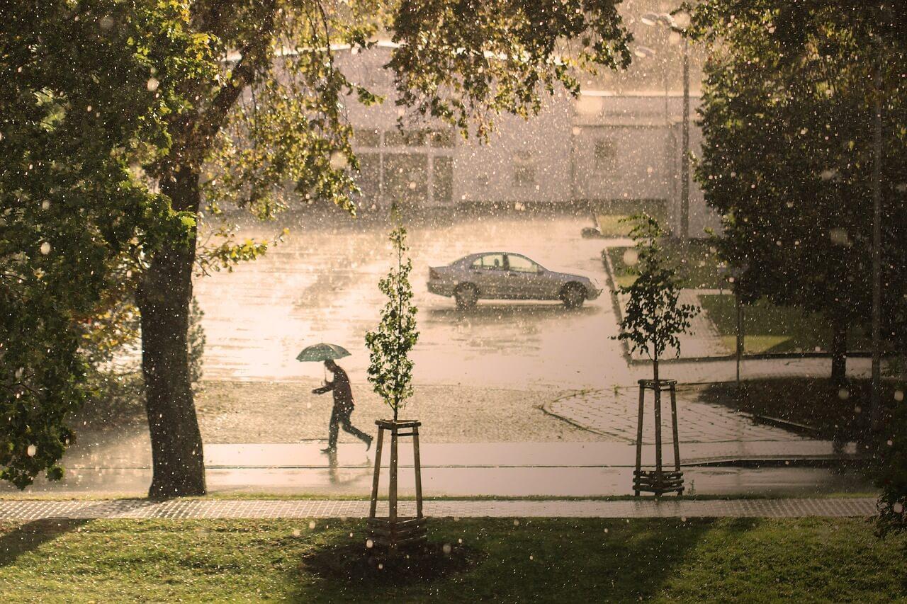 Regenschauer und Gewitter