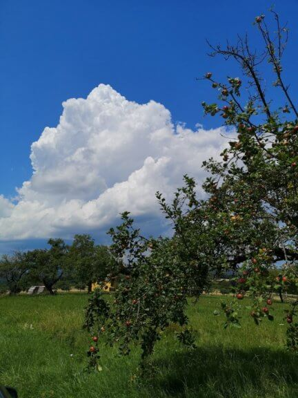 Quellwolken über Pinkafeld um 13:45 Uhr - Storm Science Austria