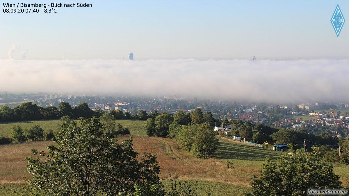 Nebel in Wien