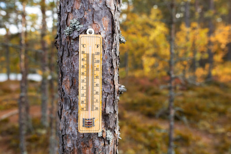 Temperatursturz, nachfolgend kühl