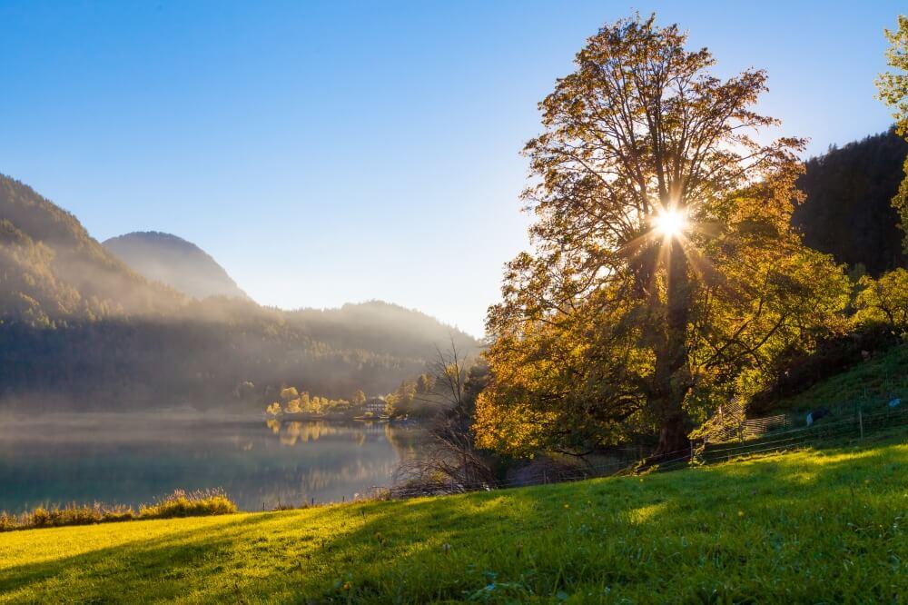 Sonne im Herbst