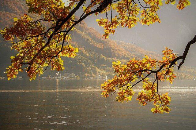 Herbstliche Stimmung am See - pixabay.com / NickyPe