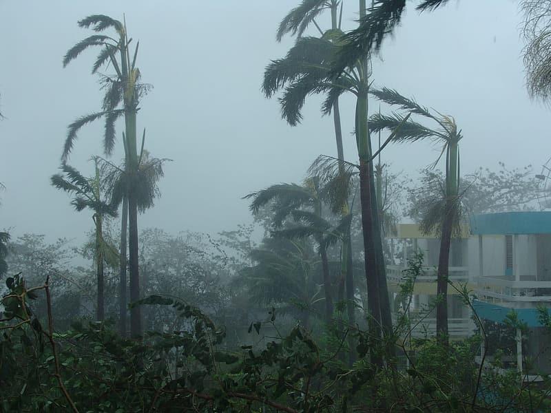 Sturmschäden durch Hurrikan IOTA - MorecastUS