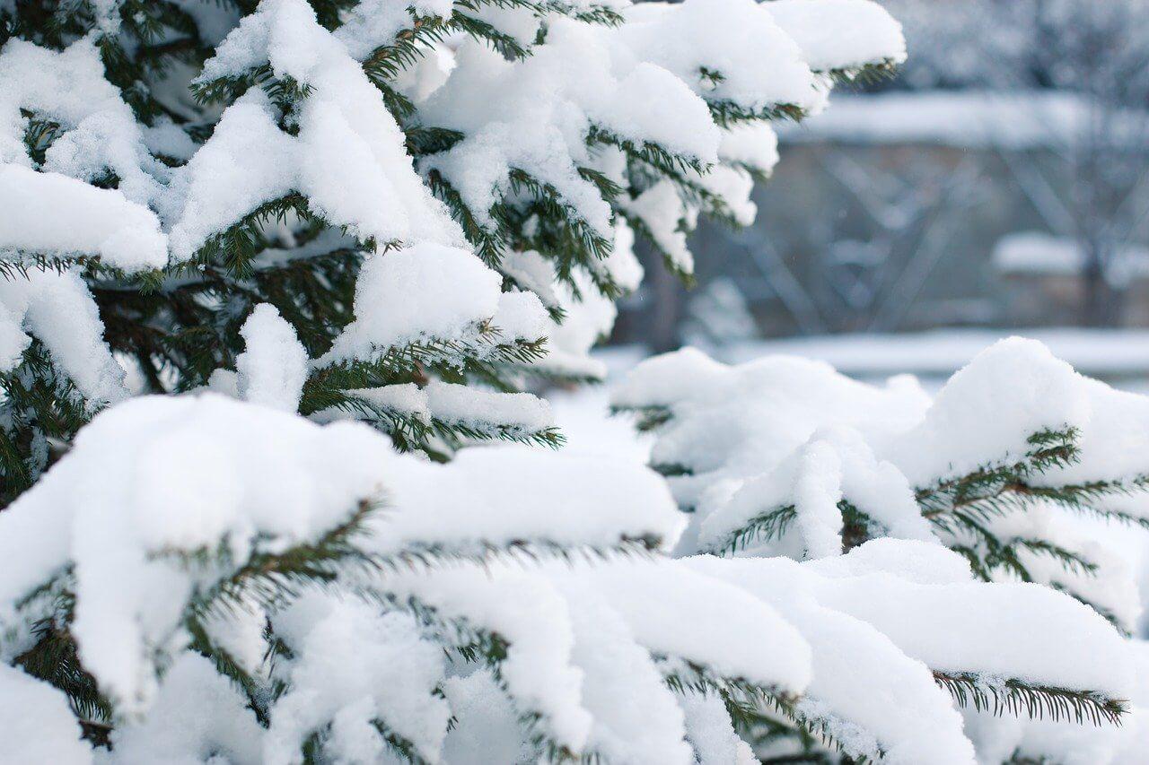 Am Montag kräftiger Schneefall in Osttirol und Kärnten