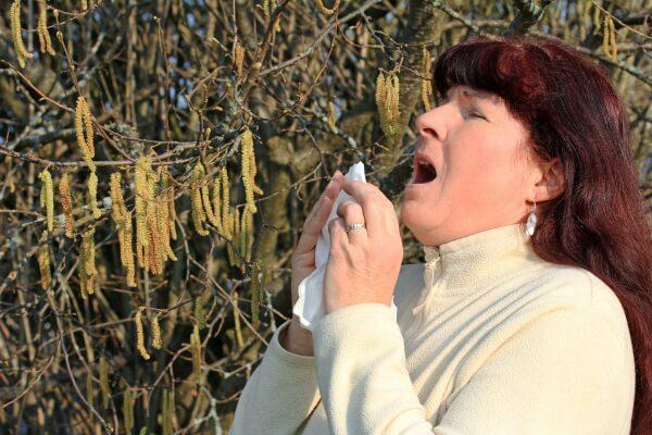 Pollensaison startet richtig durch