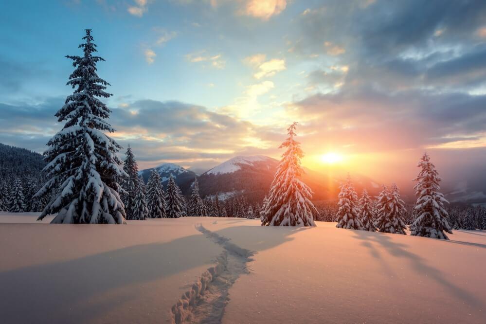 Neuschnee und Sonne