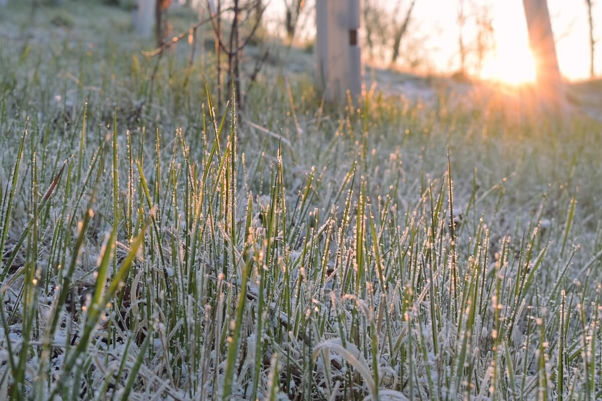 März 2021 im Südosten sehr trocken, am Ende Wärmerekorde