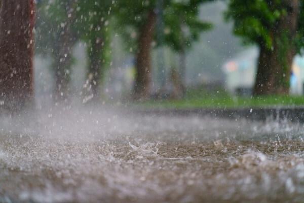 Starker Regen im Wald- und Weinviertel