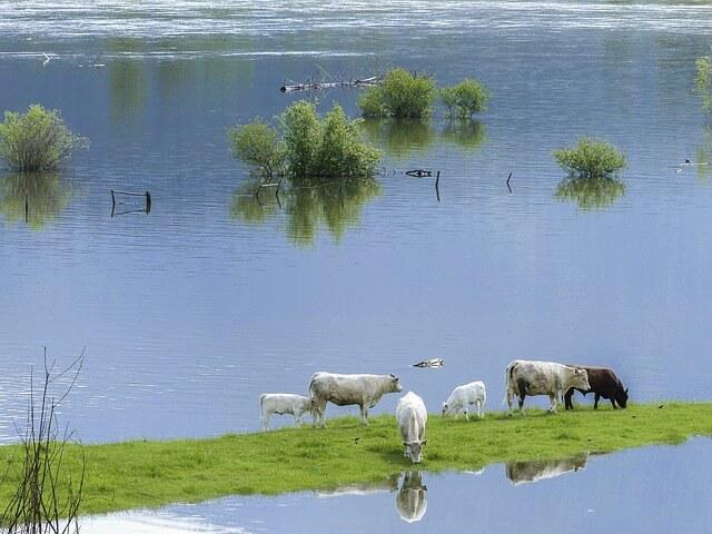 Überflutungen im Alpenraum - pixabay.com