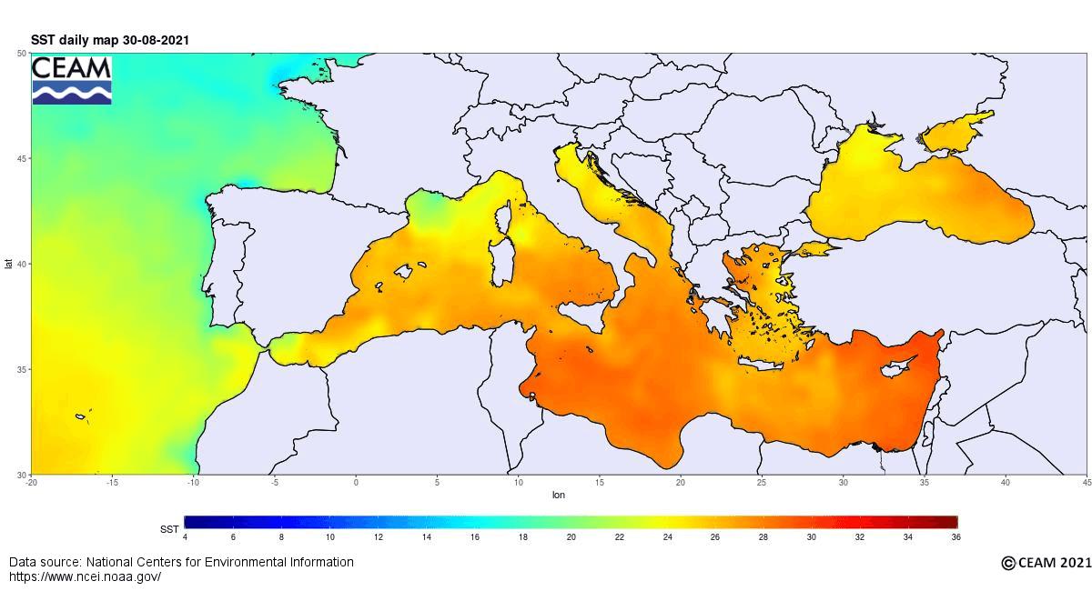 Wassertemperatur Mittelmeer September 2021 NOAA