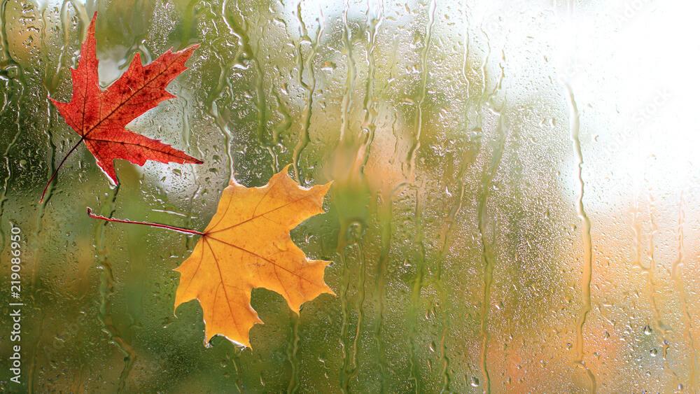 Wochenausblick: Kühles Herbstwetter an Alpennordseite