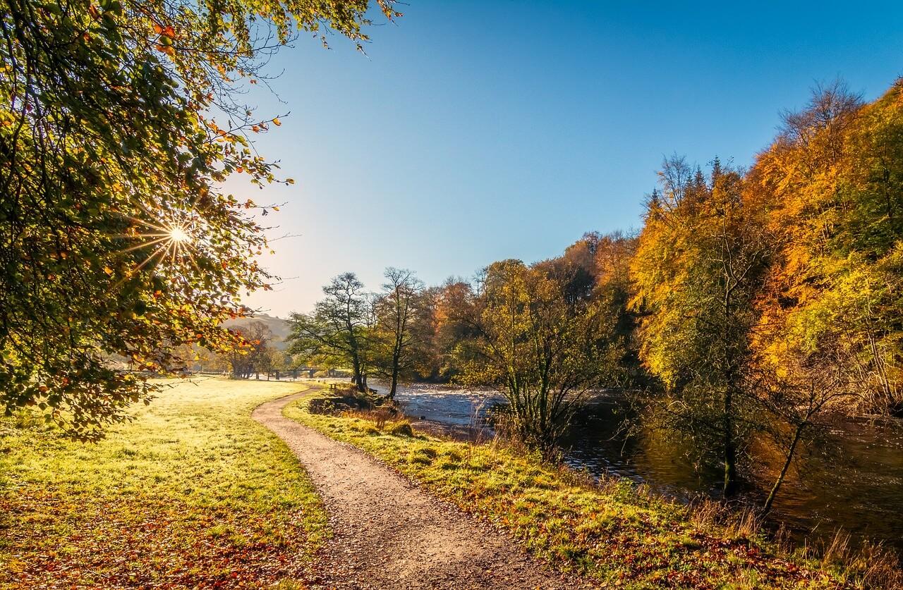 Goldener Herbst @ pixabay.com